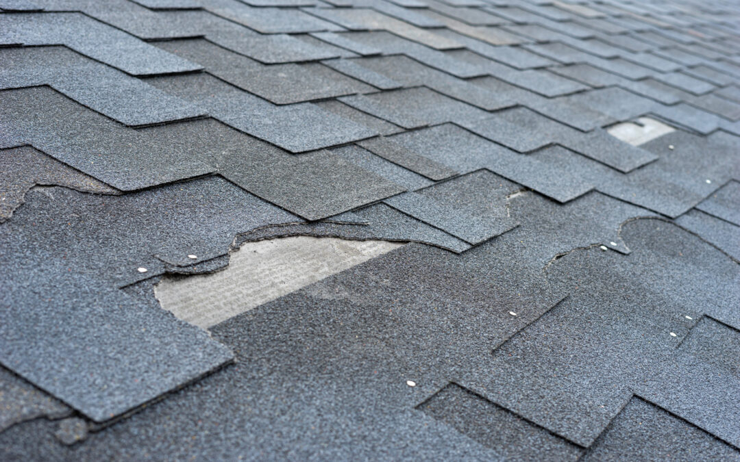 The Beginners Guide to Roofing Maintenance