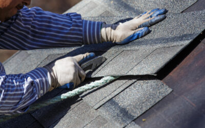 3 Must Have Roofing Maintenance Tips